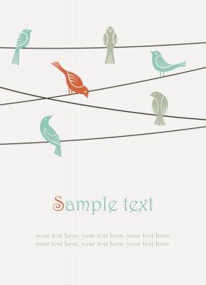 oiseaux sur des fils