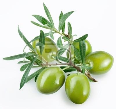 olives vertes avec une branche sur un fond blanc