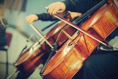 Papiers peints Orchestre symphonique sur scène, les mains à jouer du violoncelle