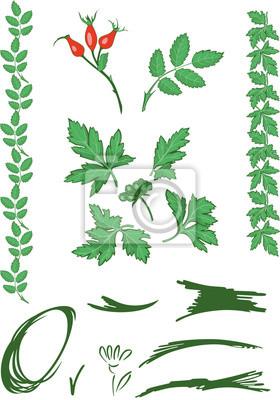 ornement floral vert