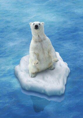 Papiers peints Ours Blanc / Fonte des glaces