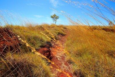 Papiers peints Outback australien