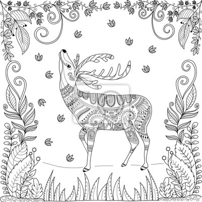 Page De Livre A Colorier Du Cerf Dans La Jungle Pour Lillustration