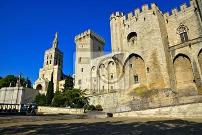 Palais Des Papes Et Cathedrale Dans Le Centre Historique Davignon