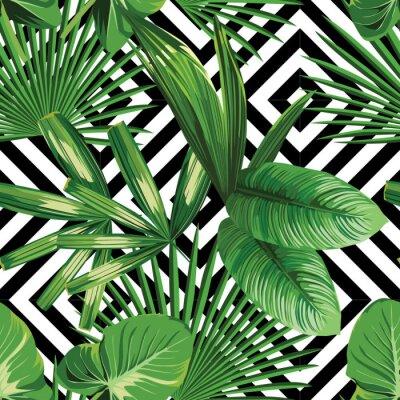 Palme Tropicale Laisse Modele Fond Geometrique Papier Peint