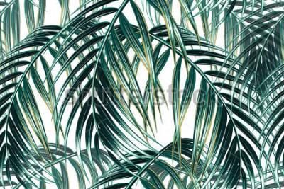 Papiers peints Palmier tropical feuilles fond vectorielle continue motif floral