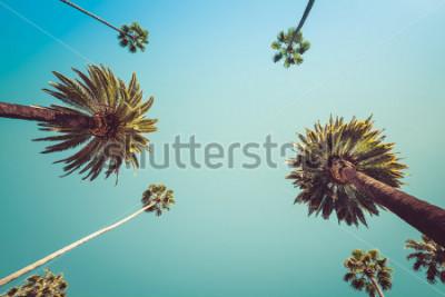 Papiers peints Palmiers Vintge Redeo Vintage Los Angeles - ciel clair de l'été