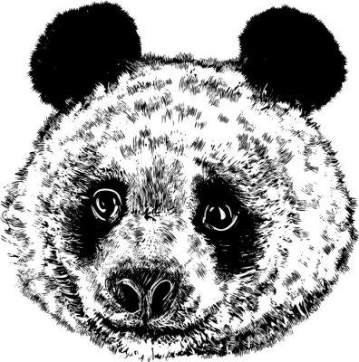 Papiers peints Panda 01