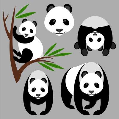 Papiers peints Panda