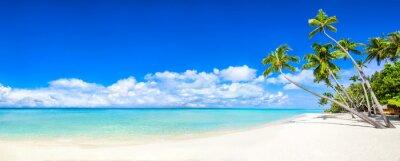 Papiers peints Panorama de plage avec mer et palmiers