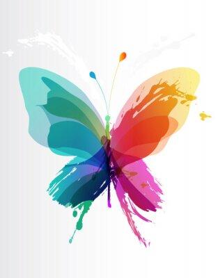 Papiers peints Papillon coloré créé des éclaboussures et des objets colorés.