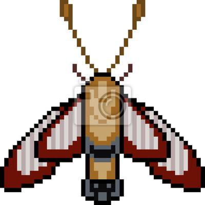 Papiers Peints Papillon De Linsecte Vecteur Pixel Art