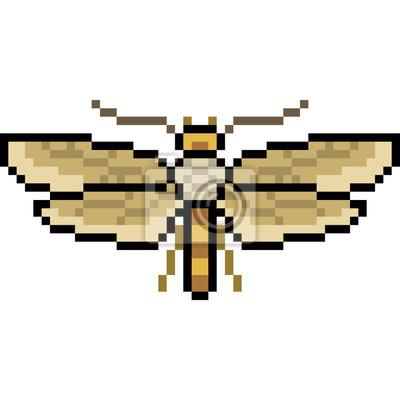 Papiers Peints Papillon De Pixel Art Vectoriel