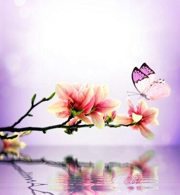 Papiers peints Papillon et fleurs de magnolia
