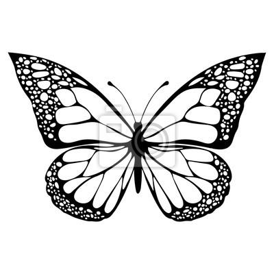 Papiers Peints Papillon Monochrome Livre à Colorier Illustration En Noir