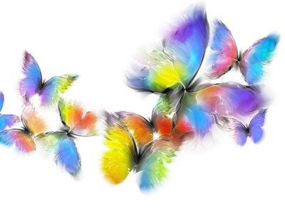 Papiers peints papillons