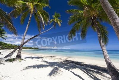 Papiers peints Paradis tropical sur l'île de Fidji