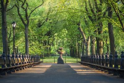 Papiers peints Parc central. Image du centre commercial à Central Park, New York, États-Unis