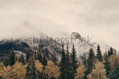 Papiers peints Parc national Banff, montagne brumeuses et forêt au Canada.