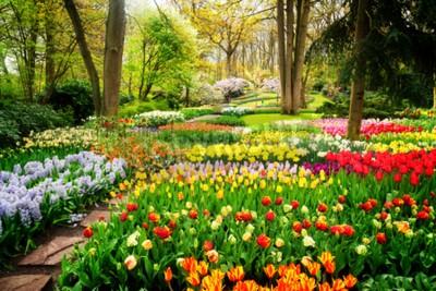 Papiers peints Parterres de fleurs de tulipes colorées et chemin dans un jardin formel de printemps, ton rétro