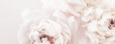 Papiers peints Pastel peony flowers in bloom as floral art background, wedding decor and luxury branding design