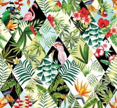 Patchwork tropicale fond transparent papier peint • papiers peints ...