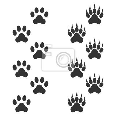 Empreinte Patte De Chien patte de chien et patte de tigre avec des griffes. tracer lanimal