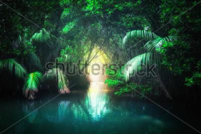 Papiers peints Paysage de jungle fantastique de lac tropical turquoise dans la forêt tropicale de mangrove avec tunnel et chemin à travers luxuriante. Sri Lanka nature et destinations de voyage