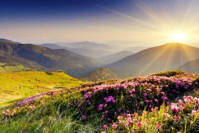 Papiers peints paysage de montagne