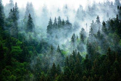 Papiers peints Paysage de montagne brumeuse