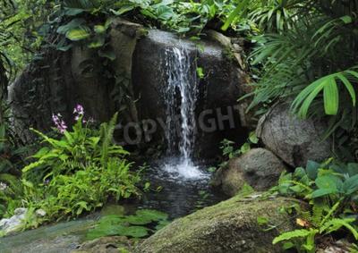 Papiers peints Petite cascade de montagne dans la jungle tropicale