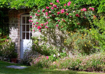 papiers peints petits jardin fleuri et rosier sur faade de maison - Jardin Fleuri