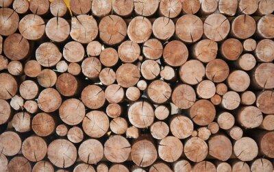 Papiers peints Pile of wood logs stumps for winter