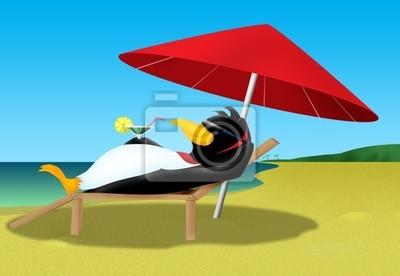 pingouin sur la plage