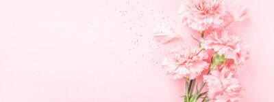 Papiers peints Pink carnations on pink background. Banner with flowers in pastel colours.