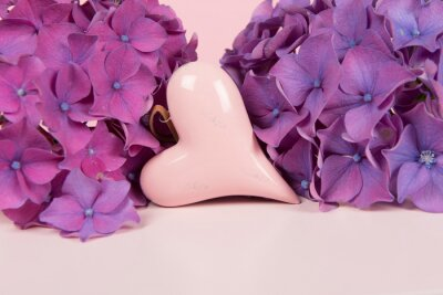 Pink heartssurrounded by purple blooming hortensia flowers on a soft pink pastel colored background with copy space