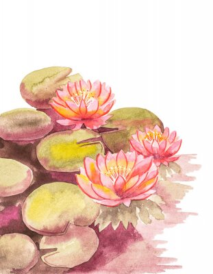 Papiers peints Pink lotuses with brown-green leaves, top right blank background for an inscription, watercolor handwork.
