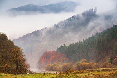 Papiers peints Pluie d'automne et brouillard dans les montagnes. Fond de forêt automne coloré