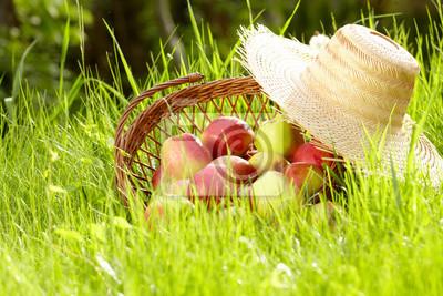 pomme dans le jardin