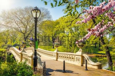 Papiers peints Pont de Bow à Central Park au printemps, journée ensoleillée, New York City