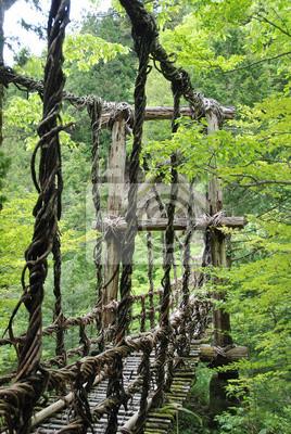 Papiers peints Pont de Lianes ET Bambou Kazura-bashi un Oku Iya, Shikoku