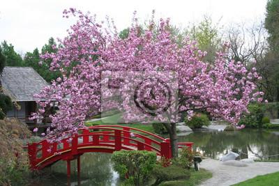 pont sous un cerisier fleuri papier peint papiers peints cerisier jardin japonais arbre. Black Bedroom Furniture Sets. Home Design Ideas