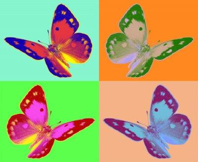 Papiers peints pop art Colias papillon