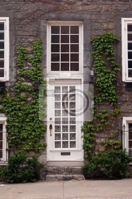 porte dentr e blanche et fen tres guillotine vert vignes papier peint papiers peints. Black Bedroom Furniture Sets. Home Design Ideas
