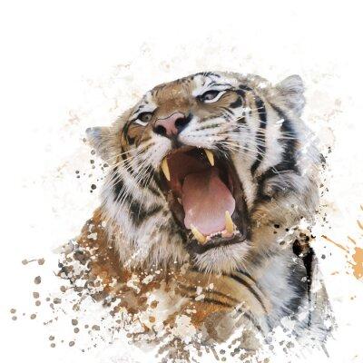 Papiers peints Portrait de tigre Aquarelle