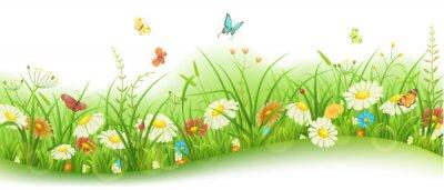 Papiers peints Printemps ou été, floral, bannière, vert, herbe, fleurs, papillons