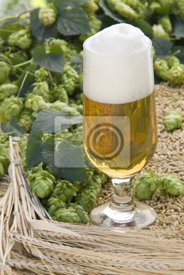 Projet de bière