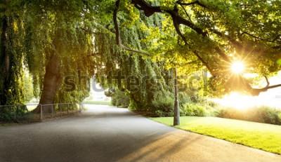 Papiers peints Promenade dans un magnifique parc de la ville