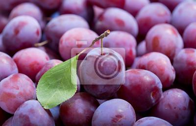 prunes fraîches comme fond