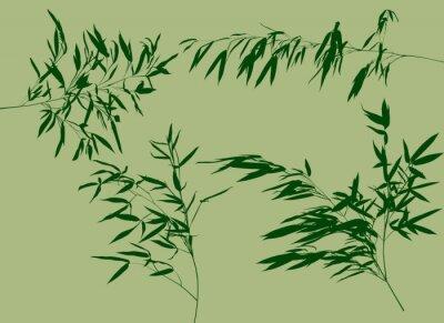 Papiers peints Quatre, vert, bambou, branches, ensemble, Illustration
